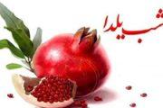 دهمین جشن یلدای انجمن ستین برگزار شد
